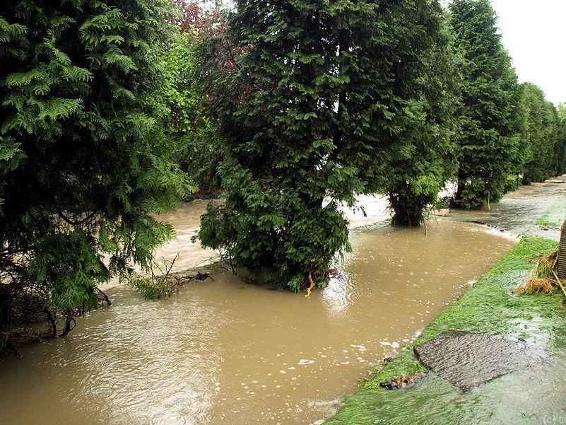 Bładnica river (flooded sidewalk)