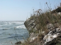 Sea of Azov (Азовське море)